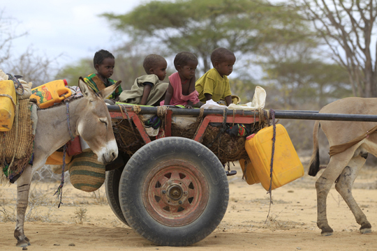Kenya East Africa Drought